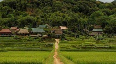 Circuit Pu Luong Ninh Binh hors des sentiers battus