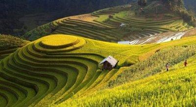 Circuit Vietnam du nord de la montagne à la mer 10 jours