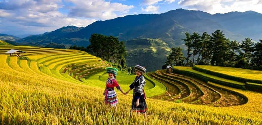 Rizières en terrasses de Yen Bai